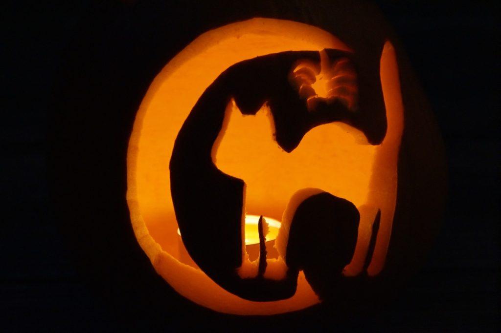 Cicás halloween tök